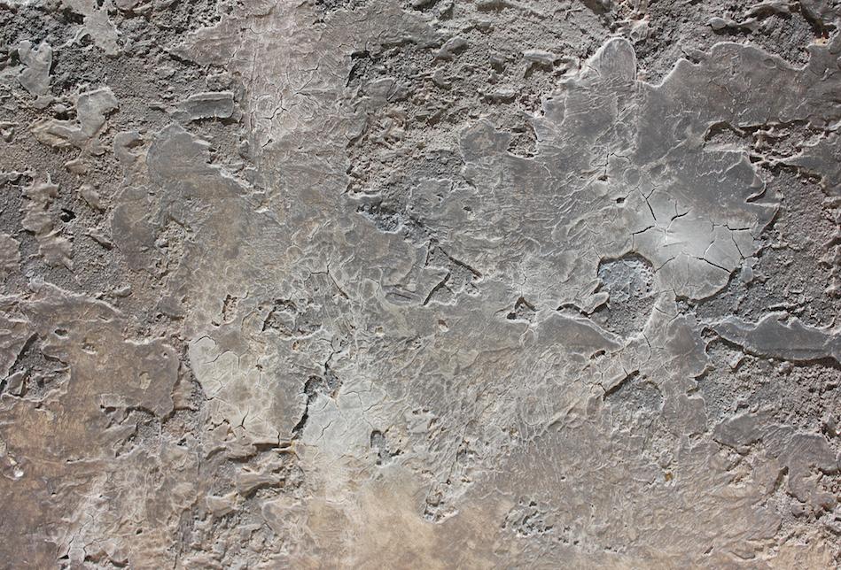 old wall darren slater painter